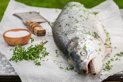 Slicing whole salmon with lemon and herbs. Closeup of slicing whole salmon with lemon and herbs Royalty Free Stock Images