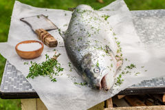 Slicing whole salmon in the summer garden for grill. On white table Royalty Free Stock Photography