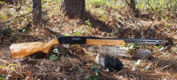 Slick rifle Royalty Free Stock Images