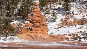 Slickrock hoodoo w Południowym Utah otacza potarganym śniegiem i sosnami fotografia royalty free