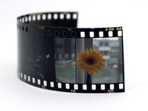 Slide film. With flower image royalty free stock photo