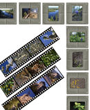Slide film. A 35mm contact sheets strip of slide film with my photos. I am the author of all the images contained in this image Stock Photo