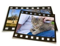 Slide frames Royalty Free Stock Image