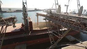 Slide of ship loading grain crops on bulk freighter via trunk to open cargo holds at silo terminal in seaport. Cereals. Bulk transshipment to vessel stock footage