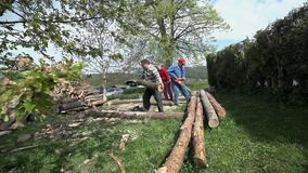 Slide shot with people working with logs on backyard. Wide shot slide from tree branch to two man working with wood pile stock video footage