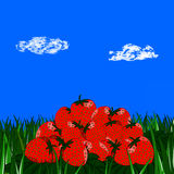 Slide strawberries on the grass on blue sky. Background with clouds Stock Photos