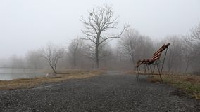 Slider shot. Empty bench at park near pond by foggy day, minimalistic cold season scene. bench at the lake in the fog in the fores. T. Bench near lake with fog stock video