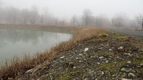 Slider shot. Empty bench at park near pond by foggy day, minimalistic cold season scene. bench at the lake in the fog in the fores. T. Bench near lake with fog stock video footage