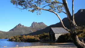Slider shot of the boat shed at dove lake framed by a gum tree stock video