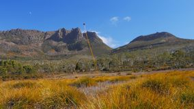 Slider shot of mt ossa and buttongrass plants on the overland track stock video
