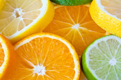 Slides of oranges, citrons and limes. Royalty Free Stock Image
