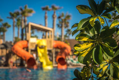 Slides at the Resort pool Royalty Free Stock Photography