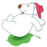 Sliding a polar bear Stock Image