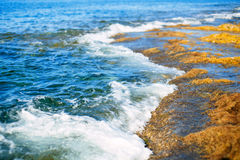 Sliema coastline. And water waves Stock Photos