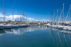 Luxurious yachts in the marina stock image