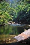 Slient River. Peacful river in Hong Kong royalty free stock image