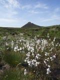 Slieve Donnard a montanha a mais alta na Irlanda norte Fotografia de Stock Royalty Free