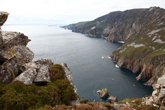 Slieve league cliffs. Stock Photos