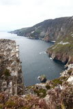 Slieve league cliffs. Royalty Free Stock Image