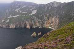 Slieve League Cliffs, Ireland Royalty Free Stock Photo
