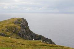 Slieve League cliffs, Ireland Royalty Free Stock Photos