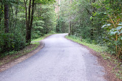 Slightly lit road in the forest. In summer Stock Photo