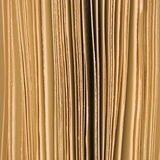 Slightly open book pages background sepia, large vertical macro closeup studio shot Royalty Free Stock Photo