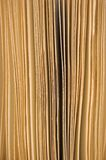 Slightly open book pages closeup background sepia Royalty Free Stock Image