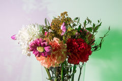 Slightly wilted flowers in a transparent vase. Flowers just starting to wilt in a transparent vase in front of a white wall colored green and purple using Royalty Free Stock Photos
