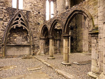 Sligo Abbey Interior. The ruin of an ancient medieval Dominican Friary founded in the mid-13th century, this stone abbey contains many carved sculptures, a Stock Images