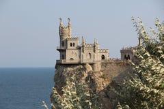 Slik het nest van ` s op de rots van de Zwarte Zee Stock Foto