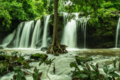 Silk Waterfall with leaves, trees Stock Images
