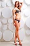 Slim beauty posing in lingerie Stock Photos