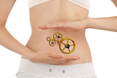 Slim Body of Young Woman with Perfect Work of Intestinal Motilit Stock Photography