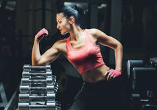 Slim bodybuilder girl shows biceps while training in the gym. Stock Photos