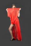 Slim elegant girl Stock Image