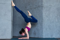 Slim female yogi wearing sportswear performing inversion or arm balance standing upside down on forearms Stock Images