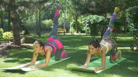 Slim fit women doing plank exercise with one leg up