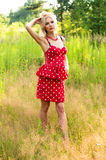 Slim girl in a dress on nature Stock Photography