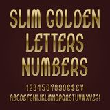 Slim golden letters, numbers, dollar, yen, pound and euro currency signs, exclamation and question marks.  royalty free illustration