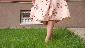 Slim lady in dress bare feet walk along fresh green grass. Bare feet of slim lady in long pink summer dress walk along lush green grass lawn on warm day close stock video footage