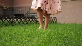 Slim lady in dress bare feet walk along fresh green grass. Bare feet of slim lady in long pink summer dress walk along lush green grass lawn on warm day close stock video