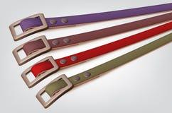 Slim leather belts set Stock Image