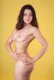 Slim nude female Stock Photography