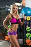 Slim sexy woman in sports gym shot Royalty Free Stock Photo