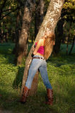 Slim shaped blond girl. Slim shaped beautiful blond girl enjoying forest in the warm rays of sunset Stock Photos