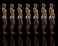 Slim to overweight female Royalty Free Stock Image
