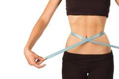 Slim waist. Royalty Free Stock Photo