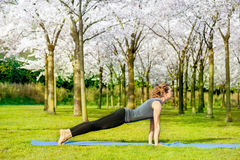 Slim woman stretching. In a spring park Royalty Free Stock Photo