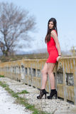 Slim woman wear short red dress and high heels Royalty Free Stock Photo